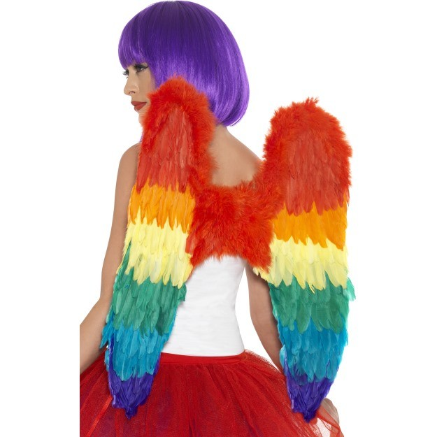 Rainbow Burlesque Feather Wings